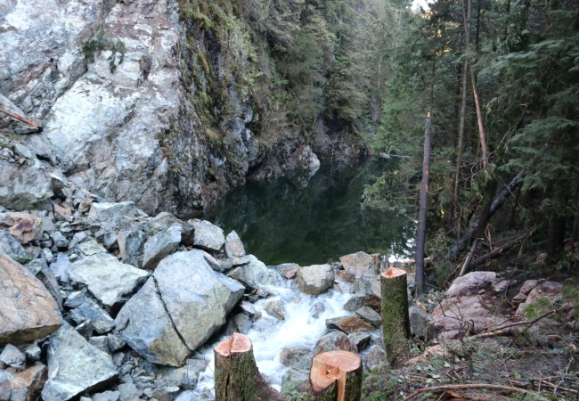 Last Rites for Seymour River Salmon and Steelhead?