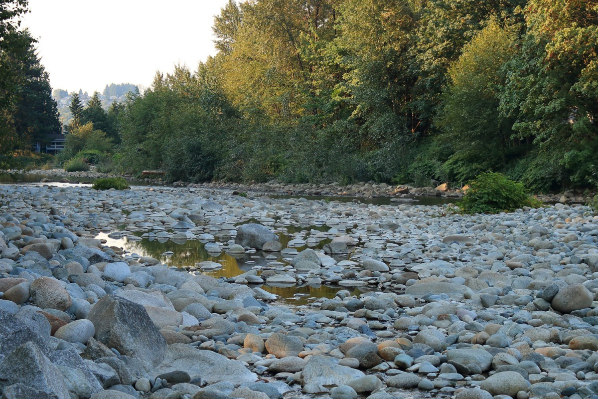 Low water on BC's Seymour River