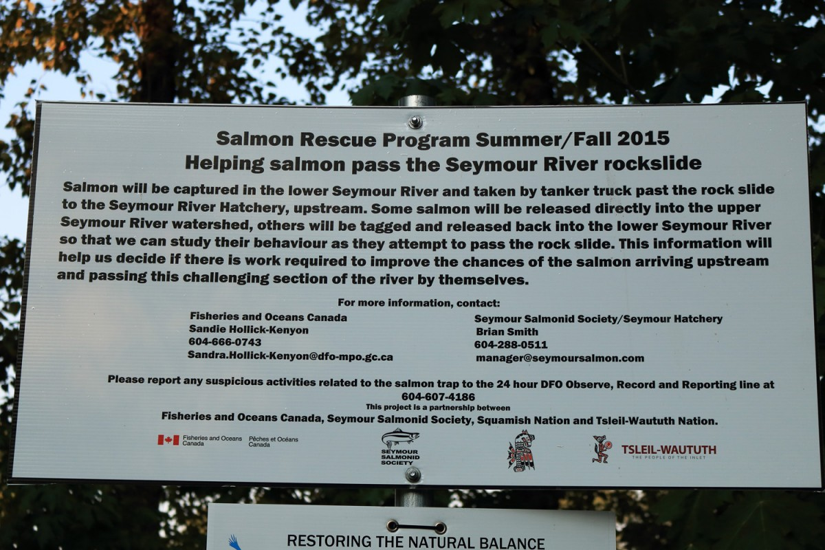 Fisheries and Oceans Canada sign on the Seymour River