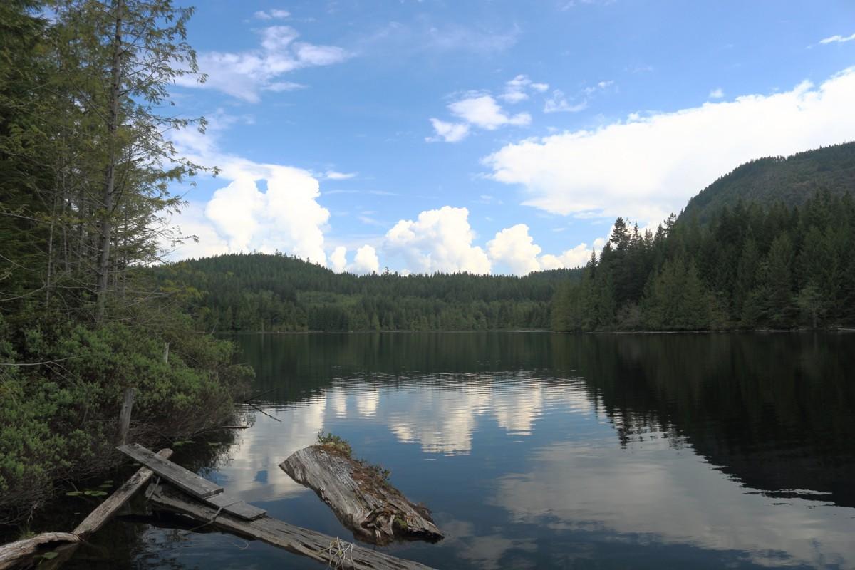 Klein Lake Logs