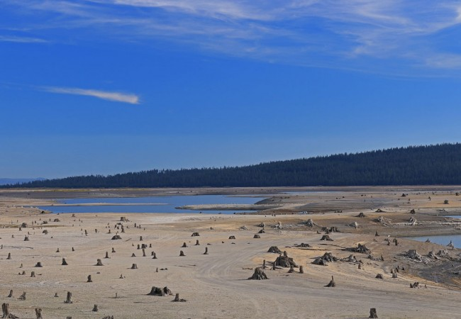 What We're Working On: The Pacific Northwest Drought