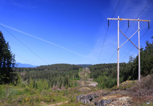Under the Power Lines