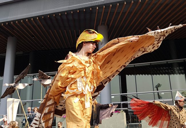 Vancouver's Inaugural Bird Fest Takes Flight