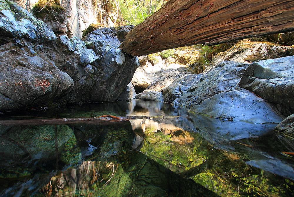 Homesite Creek Sunshine Coast